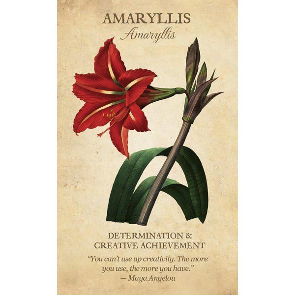 Botanical Inspirations Deck and Book Set 2