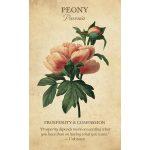 Botanical Inspirations Deck and Book Set 4