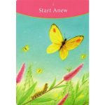 Answer is Simple Oracle Cards 7