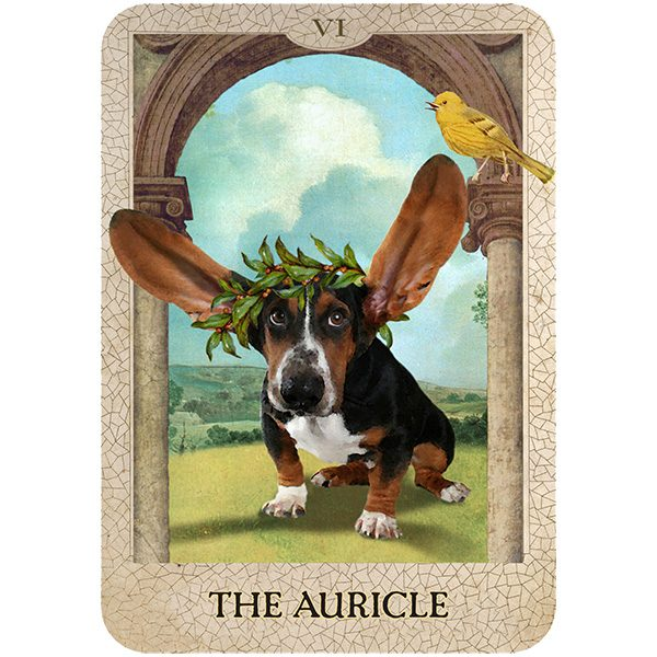 Original Dog Tarot 5
