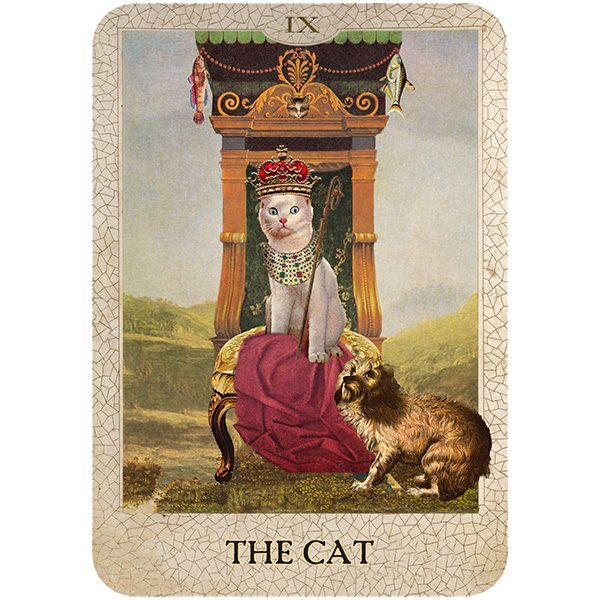 Original Dog Tarot 7
