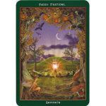 Fairy Ring Oracle 3