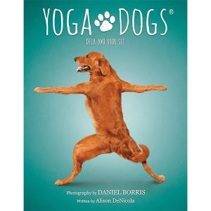 Yoga Dogs Oracle 8