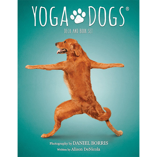 Yoga Dogs Oracle 7