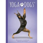 Yoga Dogs Oracle 2