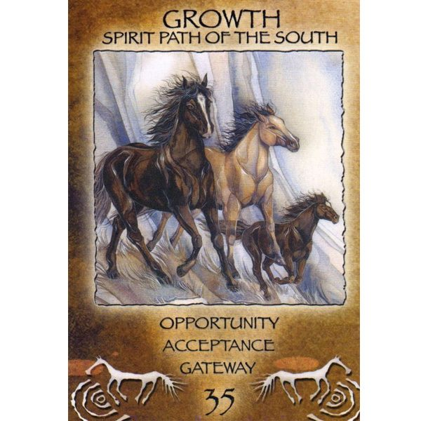 Spirit of the Wheel Meditation Deck 6