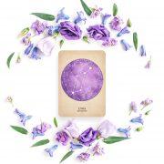 Compendium of Constellations Oracle 8
