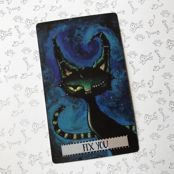 Cat Land Oracle 4