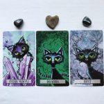 Cat Land Oracle 7