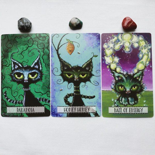 Cat Land Oracle 9