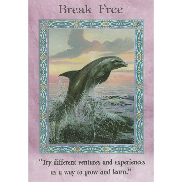 Magical Mermaids and Dolphins Oracle Cards 6