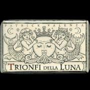 333 Tarot Trionfi della Luna (English Edition) 1