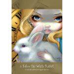 Alice The Wonderland Oracle 11