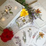 Hedgewitch Botanical Oracle 10