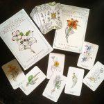 Hedgewitch Botanical Oracle 11