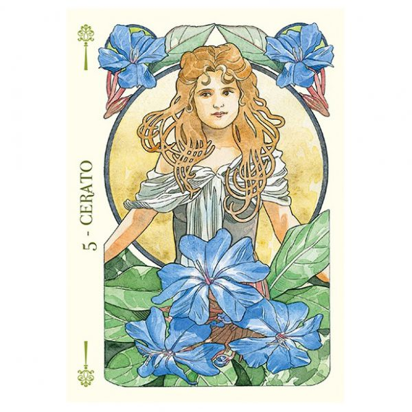 Flower Oracle 3