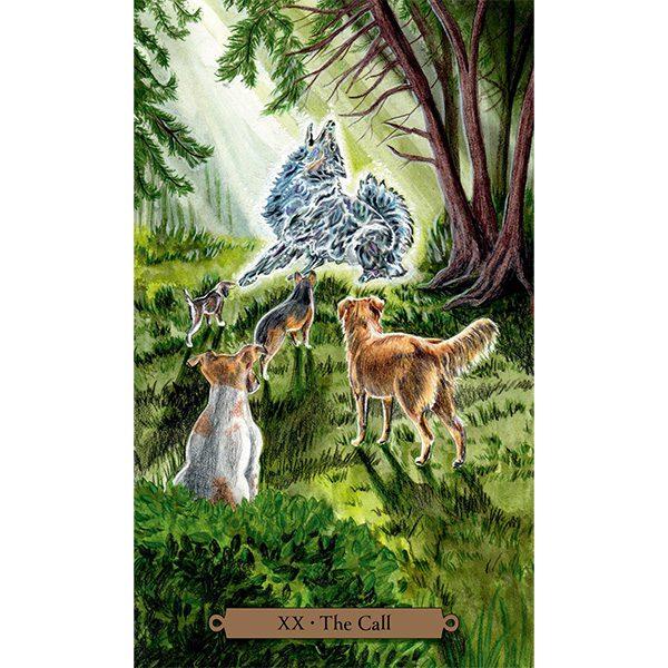 Magical Dogs Tarot 3