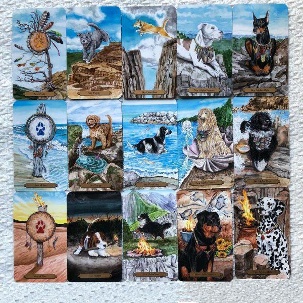 Magical Dogs Tarot 7
