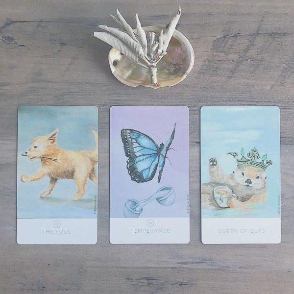 White Sage Tarot 11