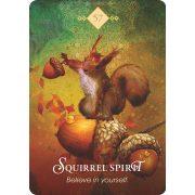 Spirit Animal Oracle 12