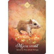Spirit Animal Oracle 13