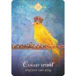 Spirit Animal Oracle 14