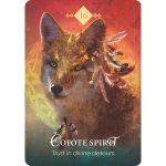 Spirit Animal Oracle 17