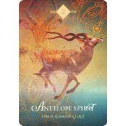 Spirit Animal Oracle 19