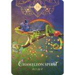 Spirit Animal Oracle 5