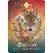 Spirit Animal Oracle 6