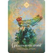 Spirit Animal Oracle 9