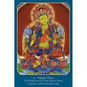 Buddha Wisdom, Shakti Power 5