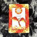 Animal Kin Oracle 7
