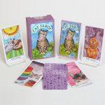 Cat Tarot 11