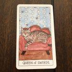 Cat Tarot 5