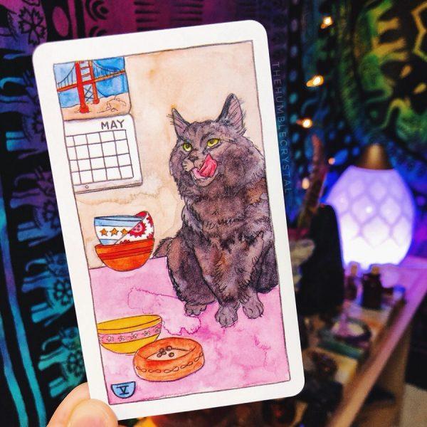 Cat Tarot 7