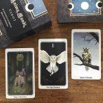 Anima Mundi Tarot 12
