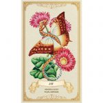 Enchanted Blossoms Empowerment Oracle 4