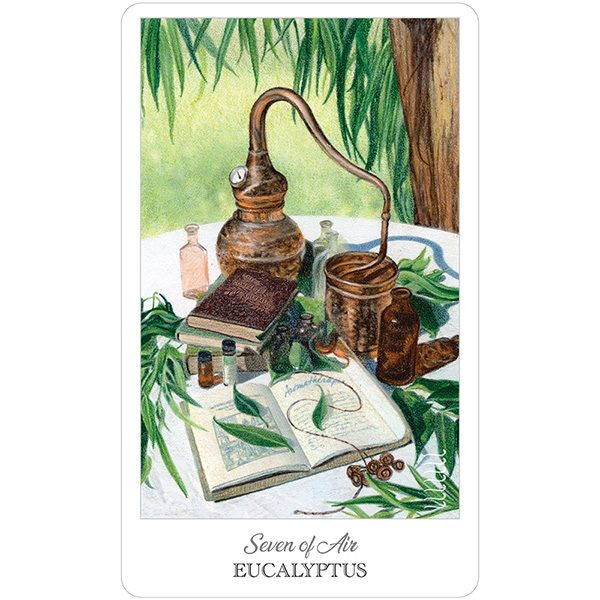 Herbcrafters Tarot 4