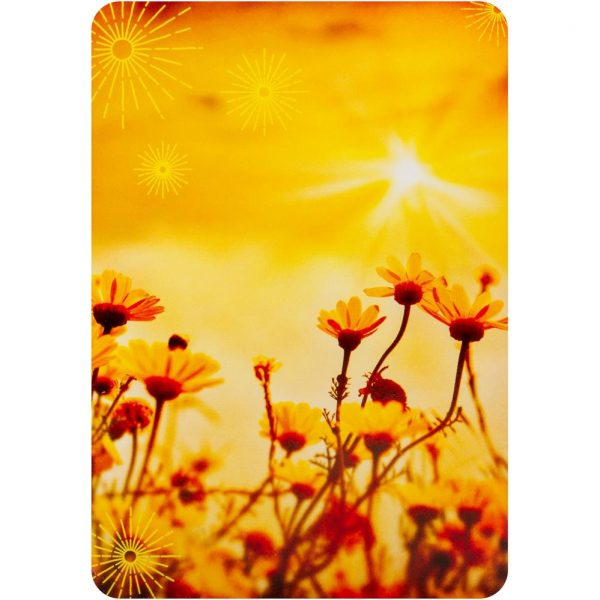 Notes from the Universe on Abundance Cards 7