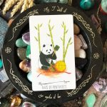 Way of the Panda Tarot 9