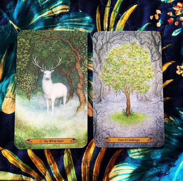 Forest of Enchantment Tarot 8