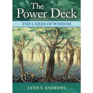 Power Deck: The Cards of Wisdom 4