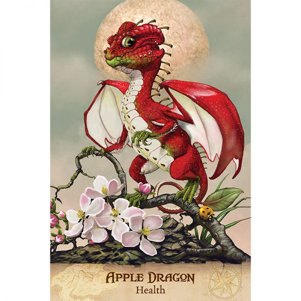 Field Guide To Garden Dragons 2