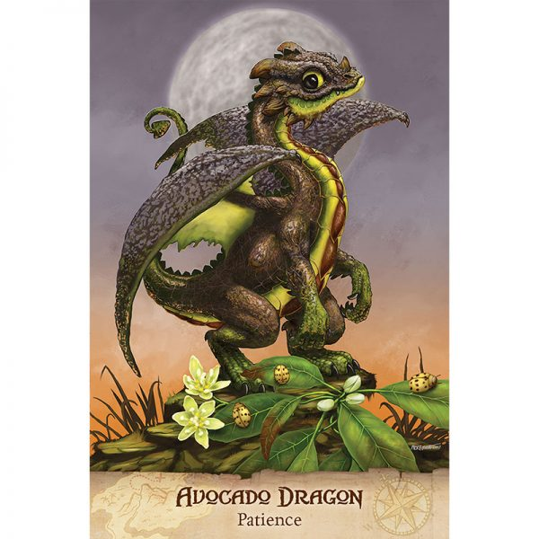 Field Guide To Garden Dragons 3