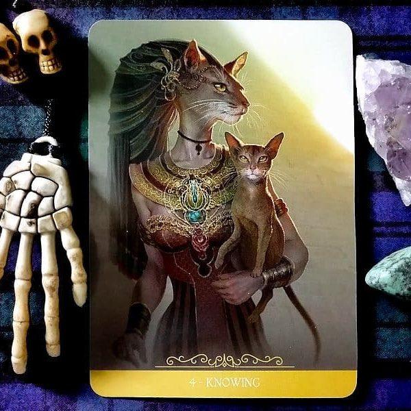 Fantasy Cats Oracle 2