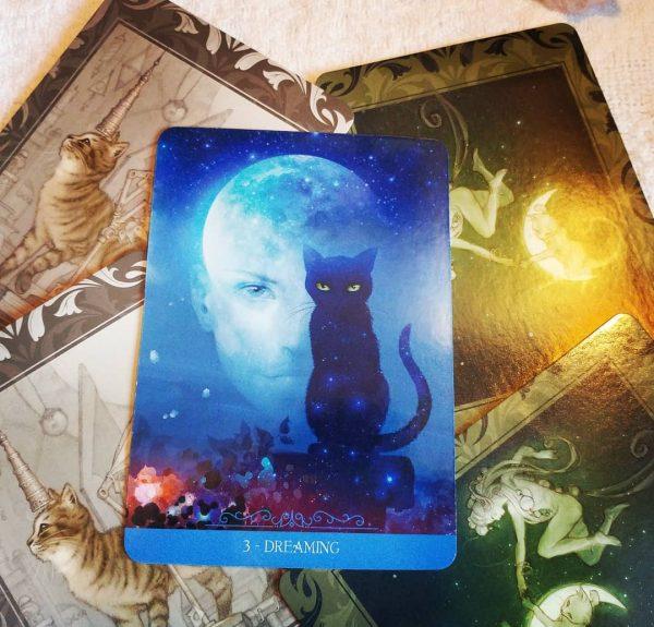 Fantasy Cats Oracle 5