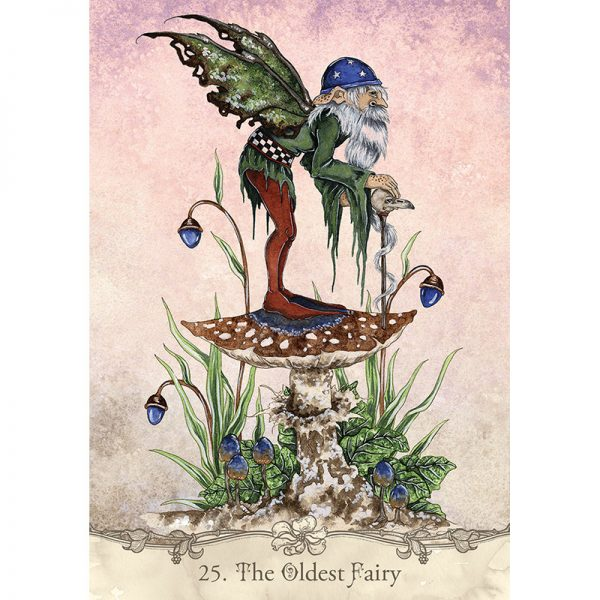 Fairy Wisdom Oracle 5