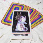 Weird Cat Tarot 8