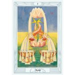 Crowley Tarot Deck and Book Gift set 4